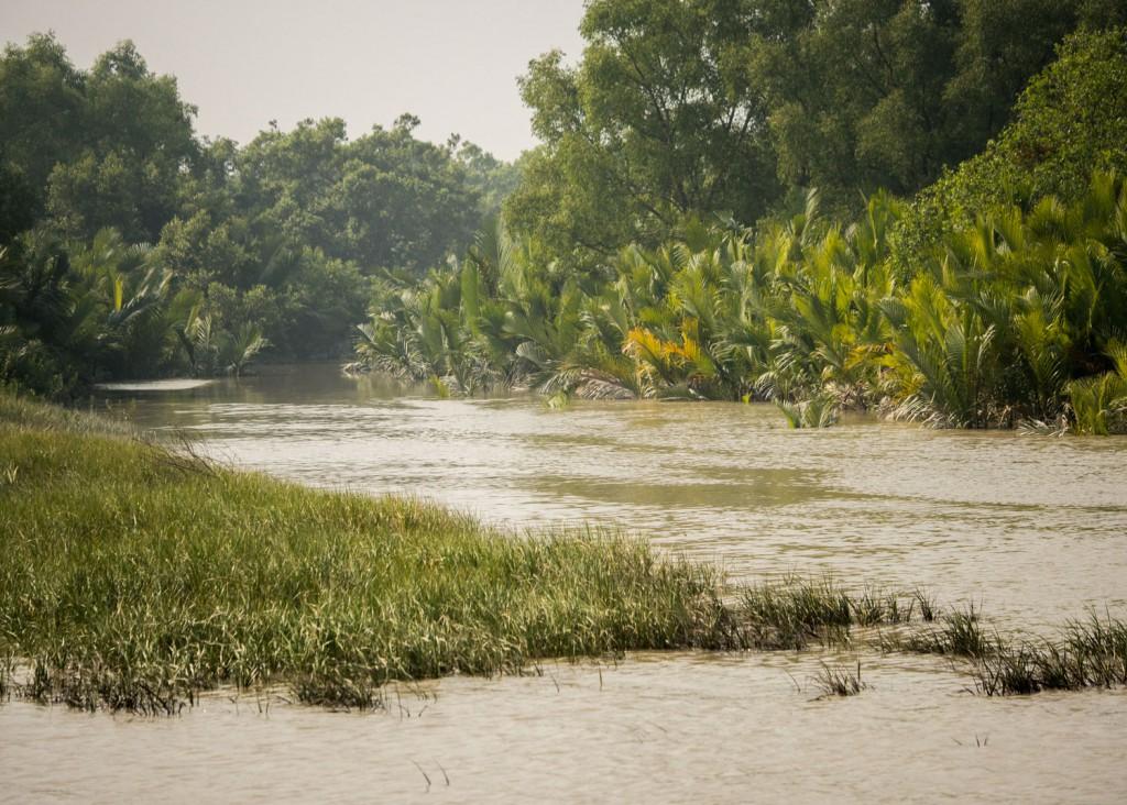 Bangladesch_20141223_267