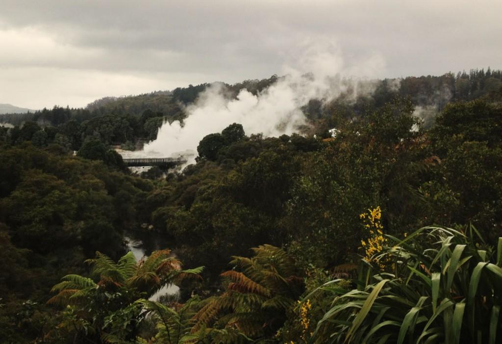 07 - Dampf Rotorua