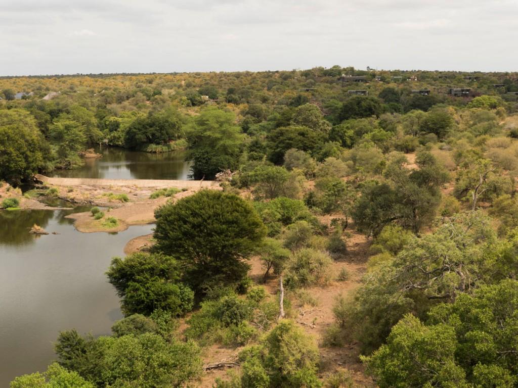 Unten im Fluss plantschen Krokodile und Nilpferde.