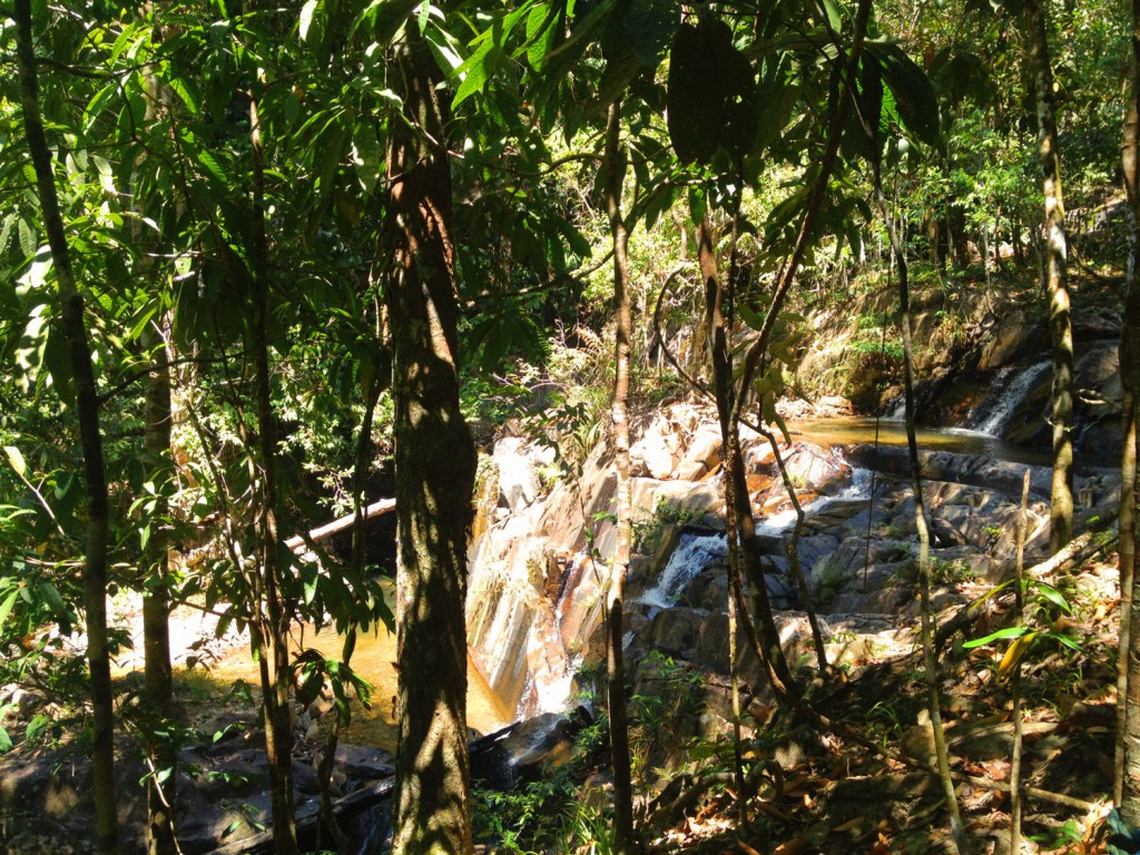 Nächster Stopp ist ein Wasserfall, in dem wir alle schwimmen gehen.