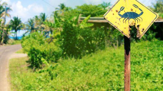 Die Magie der Maisinseln
