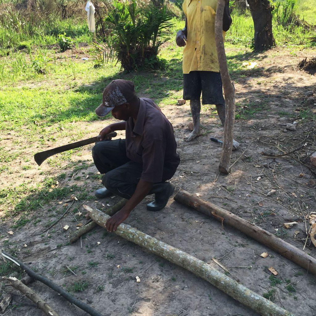 Zusammen mit den beiden Arbeitern und zwei Macheten gehen wir in den Wald und schlagen ein paar junge Bäume.