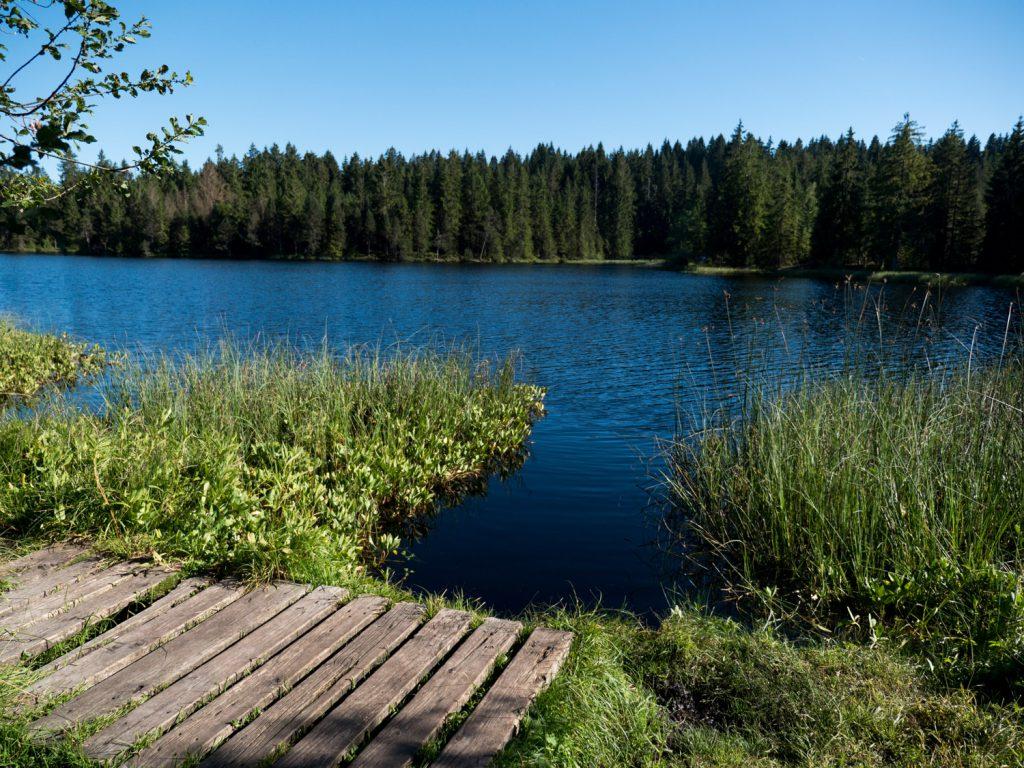 Der Étang de la Gruère ist ein gestauter Moorsee und ein Naturschutzgebiet.
