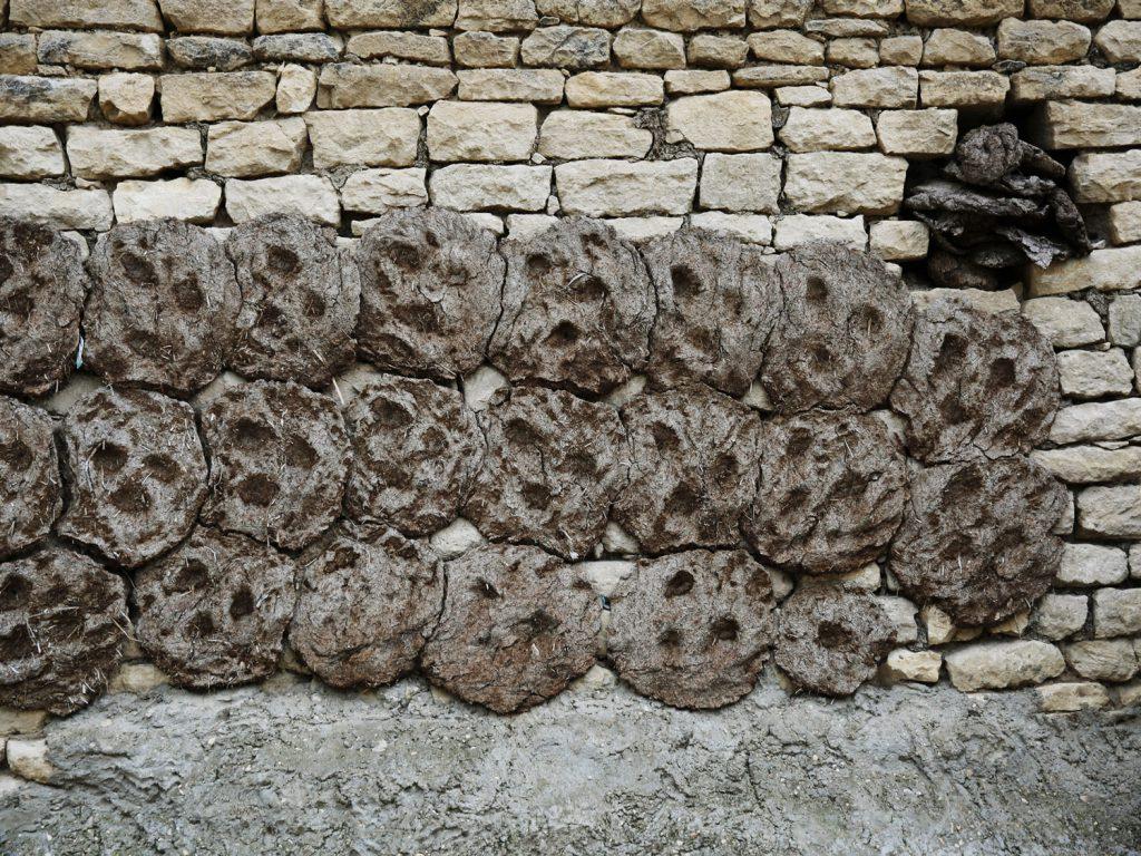 Kuhfladen trocknen an der Wand, um später als Brennmaterial zu dienen. © gullivertheis.de